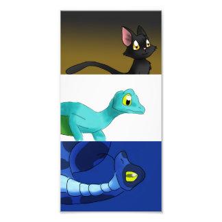 Gato negro/Gecko con alas/sistema azul de la Fotografías