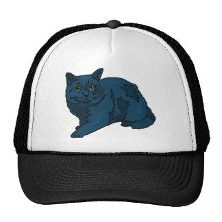 gato negro gorro de camionero