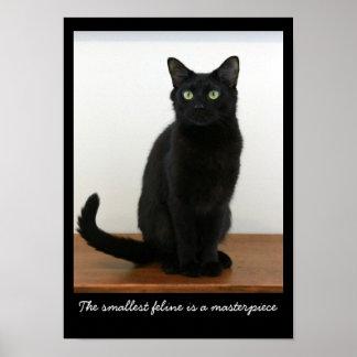 Gato negro hermoso póster