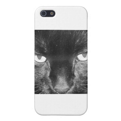 Gato negro iPhone 5 cárcasa