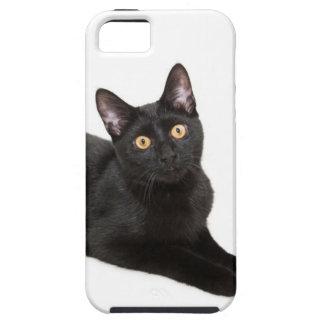 Gato negro iPhone 5 carcasas
