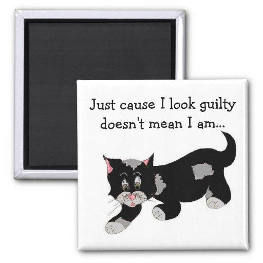 Gato negro lindo del remiendo con decir imanes de nevera