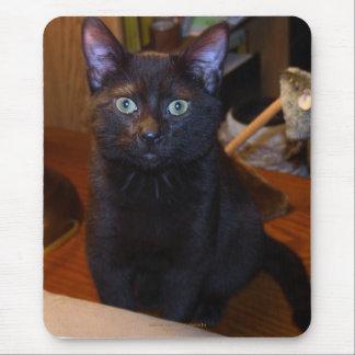 Gato negro lindo Mousepad Tapete De Raton
