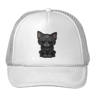 Gato negro lindo triste del gatito gorro