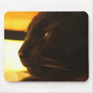 Gato negro Mousepad