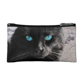 Gato negro observado azul