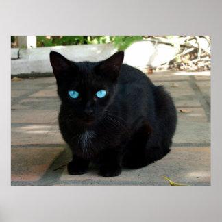 Gato negro observado azul de BLUB Impresiones