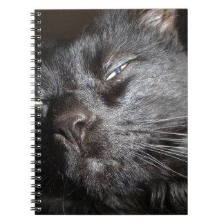 Gato negro - oh venga sí conseguirlo libro de apuntes con espiral