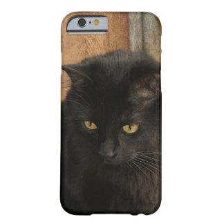 Gato negro, ojos del ámbar, tonos de la tierra funda de iPhone 6 barely there