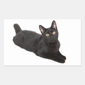 Gato negro pegatina rectangular
