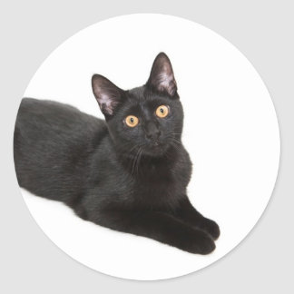 Gato negro pegatina redonda