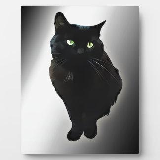 Gato negro placas con fotos