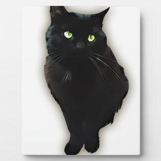 Gato negro placas con foto