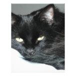 gato negro plantilla de membrete