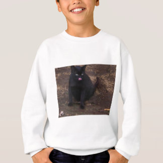 Gato negro polera