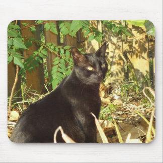 Gato negro por la mañana Sun Mousepad Tapetes De Raton