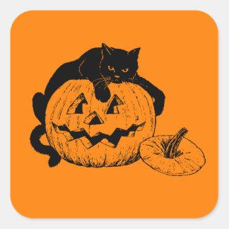 Gato negro que descansa encima de una calabaza pegatina cuadrada