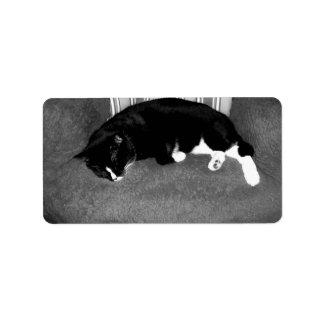 gato negro que duerme en la foto del bw de la sill etiqueta de dirección