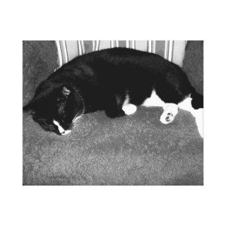 gato negro que duerme en la foto del bw de la sill impresión en tela