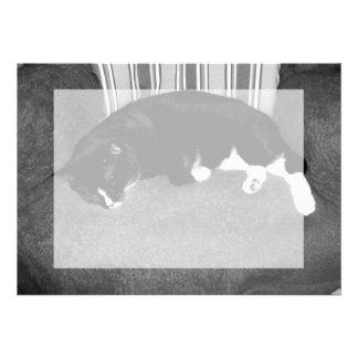 gato negro que duerme en la foto del bw de la sill anuncio