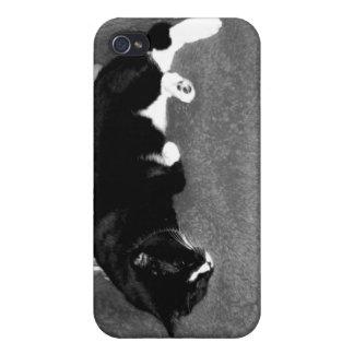 gato negro que duerme en la foto del bw de la sill iPhone 4 carcasa