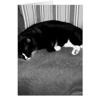 gato negro que duerme en la foto del bw de la sill tarjetas