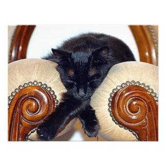 Gato negro relajado que duerme entre dos sillas invitación