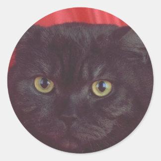 Gato negro - ROJO Pegatina Redonda
