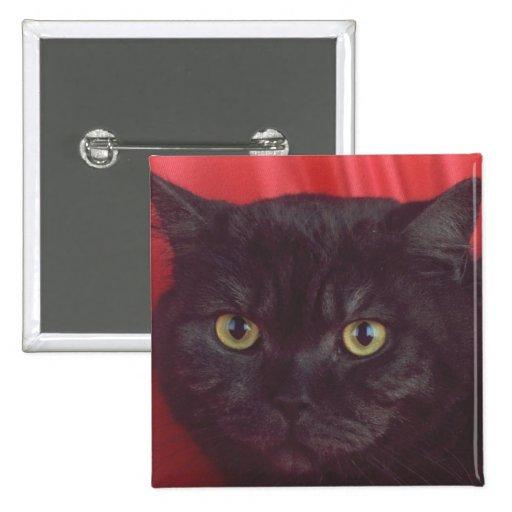 Gato negro - ROJO Pin Cuadrada 5 Cm