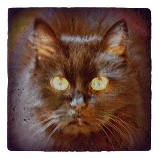 gato negro salvamanteles