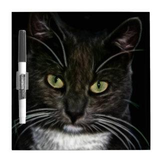 Gato negro tableros blancos