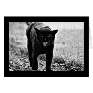 """Gato negro "" Tarjeta De Felicitación"