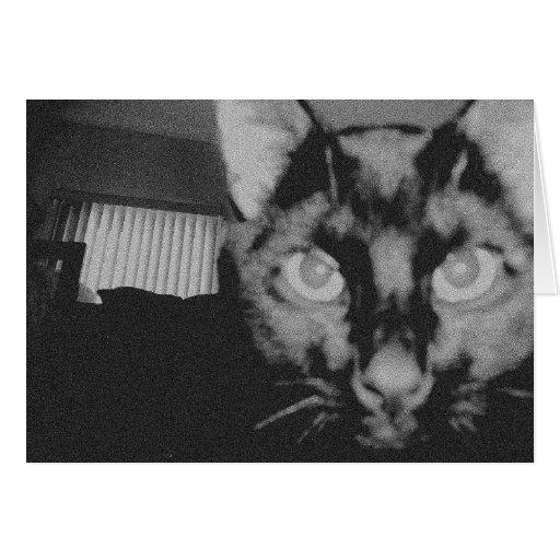 Gato negro tarjetón