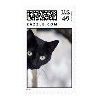 Gato negro timbres postales