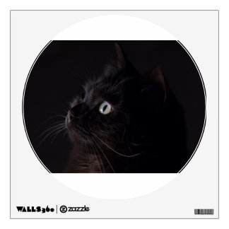 Gato negro vinilo adhesivo