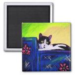 Gato negro y blanco B de la reproducción del arte  Imán De Nevera