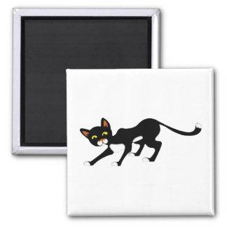 Gato negro y blanco cauteloso imán cuadrado