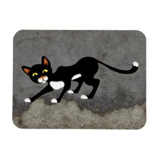 Gato negro y blanco cauteloso imán foto rectangular