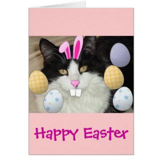 Gato negro y blanco de Pascua Tarjeta De Felicitación