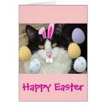 Gato negro y blanco de Pascua Tarjetón