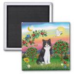 Gato negro y blanco - país brillante imanes para frigoríficos