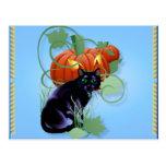 Gato negro y calabaza Glaring Postales