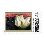 Gato negro y magnolia envio