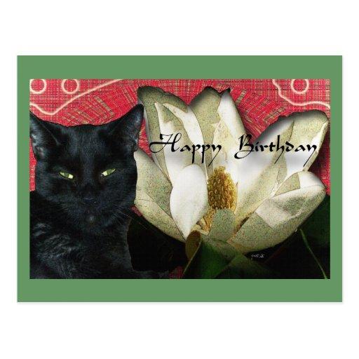 Gato negro y magnolia tarjetas postales