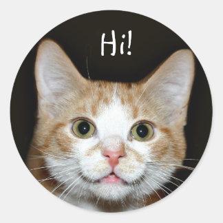 Gato Nosy Pegatina Redonda