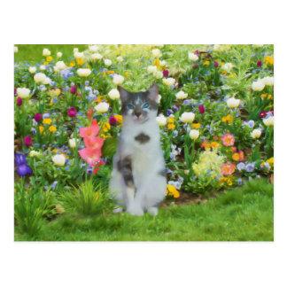 Gato observado azul entre las flores tarjetas postales