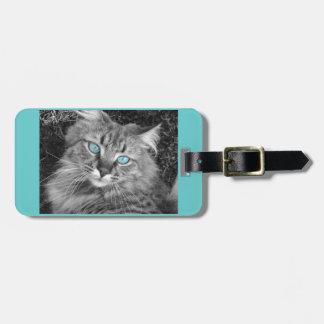 Gato observado azul hermoso etiqueta para maleta