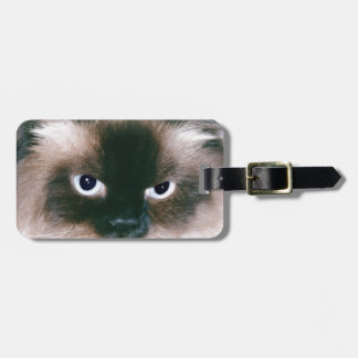 Gato orgulloso etiqueta de equipaje