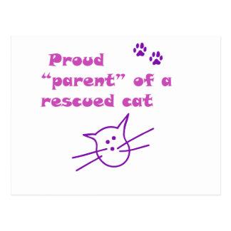 gato orgulloso postal
