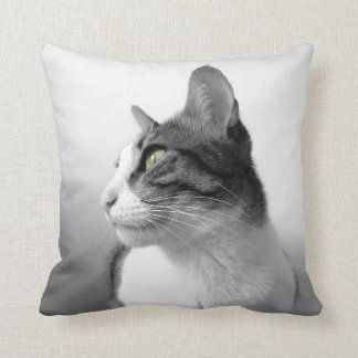 Gato pacífico almohadas